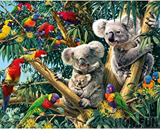 DIY 5D Diamond Painting by Number Kits,Crystal Rhinestone Embroidery Paint with Diamonds Full Drill Home Decor Parrot and Koala 15.7x11.8in 1 Pack by Unkey