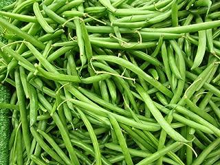 50 - Seeds: Volunteer Half Runner Bean (Green Been) - a Very Vigorous & Productive Plant!!!