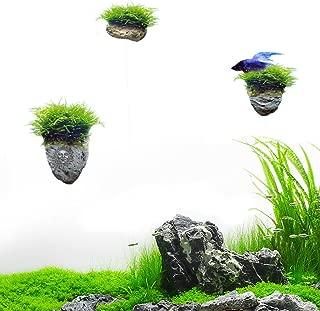 SunGrow Magical Hallelujah Floating Garden - Recreate by Pandora, The Underwater World of Avatar in Aquarium (Plants Sold Separately)
