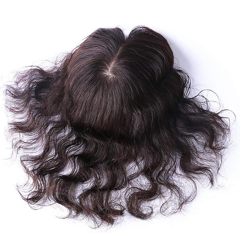 称賛サーマル認証Yrattary ヘアエクステンション人間の髪の毛の手ニードルダークブラウン巻き毛のかつら女性のための自然な合成髪のかつらロールプレイングウィッグロングとショートの女性自然 (色 : [9x14] dark brown 20cm)