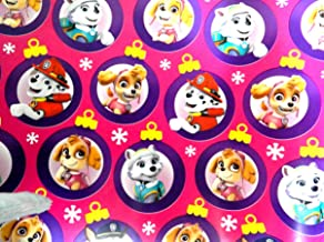 Girls Pink Paw Patrol Christmas Gift Wrapping Paper Featuring Skye and Everest 70 sq ft Roll