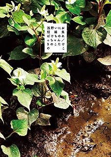 浅野いにお短編集 ばけものれっちゃん/きのこたけのこ (ビッグコミックススペシャル)