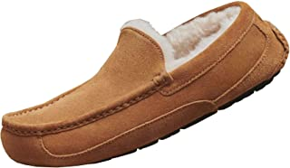 UGG Ascot, Chausson Homme