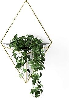 UMBRA Trigg, Jardinière Suspendue & Pot Géométrique pour Décoration Murale, Blanc, Laiton