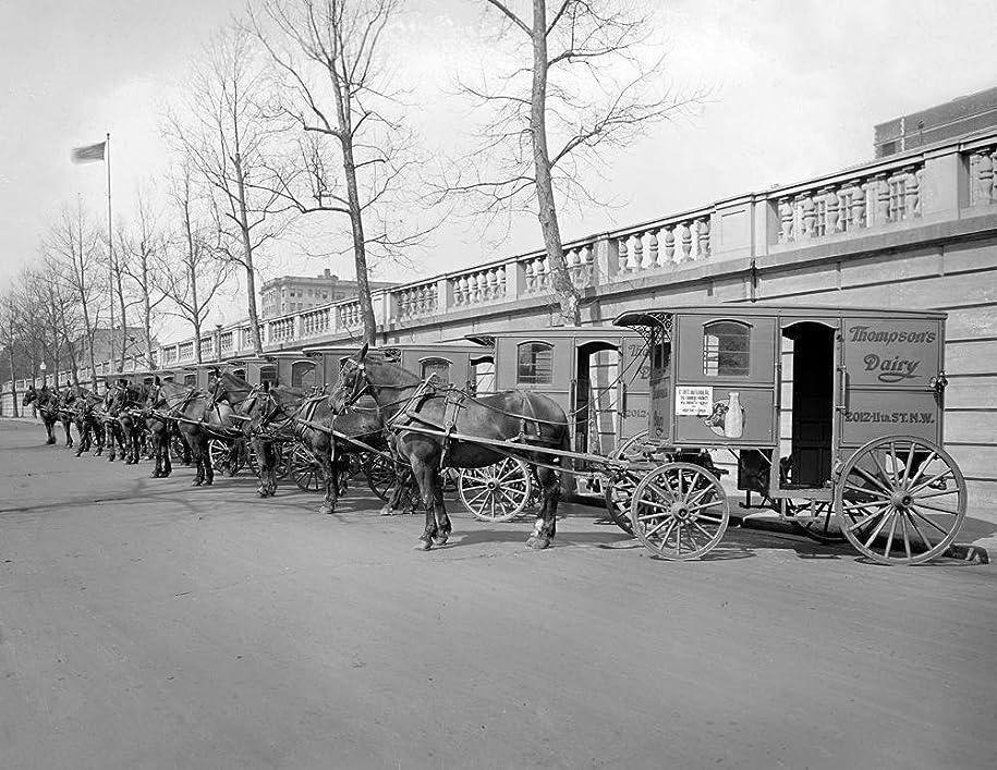 散らす繰り返すムスセレブリティアートフレームan 8?x 10フォトフレーム入りOld West Dairy Horse Drawn Wagons