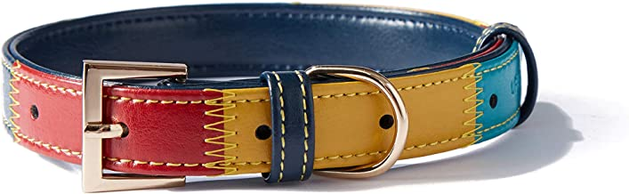 Dog Collar | Padded Faux Leather | Ultra Soft & Colorful