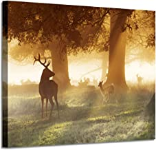 Deer Artwork Canvas Wall Art: Animal in Foggy Forest Photographic Painting Print on Canvas Pictures for Living Room (24'' x 18'')