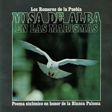 Misa De Alba En Las Marismas