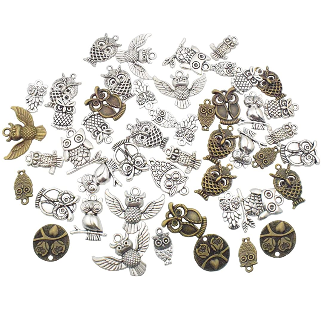 OWL Charm Collection-100g (about 60 pcs) Craft Supplies Owl Charms Pendants for Crafting, Jewelry Findings Making Accessory For DIY Necklace Bracelet (mixed owl charms)
