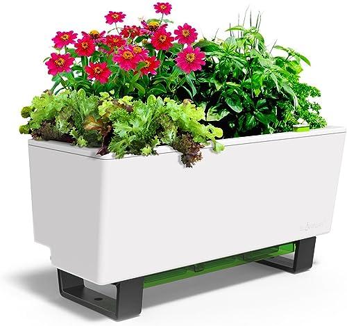 Glowpear-Self-Watering-Mini-Bench-Planter