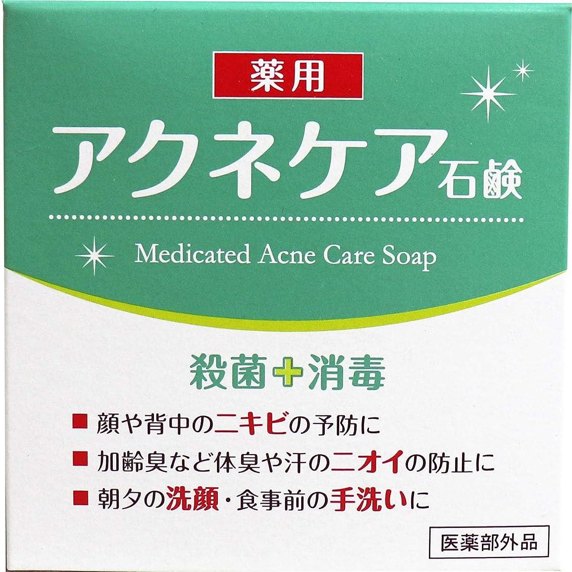 合成タイマーメイドクロバーコーポレーション 薬用 アクネケア 石けん 80g E540405H