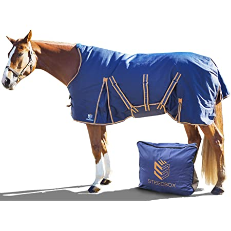 Assorted color 1200 Denier waterproof Horse Combo Rug 300g fill Winter Rug