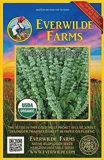 Everwilde Farms - 1000 organic Lime Basil Herb Seeds - Gold Vault Packet