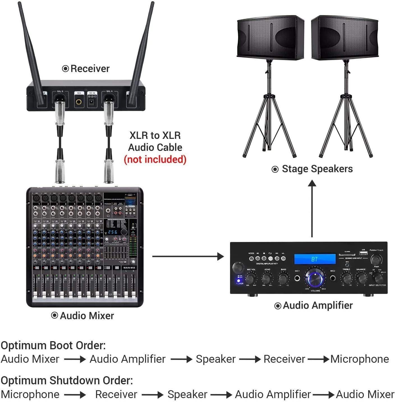 Microfono Senza Fili Tonor TW 820