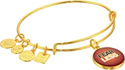 Alex and Ani Charity By Design Fearless Bangle