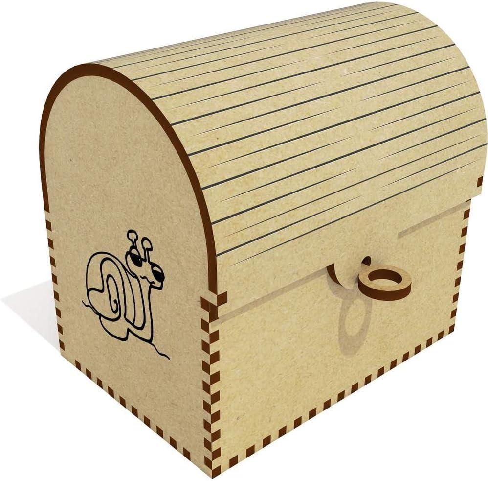 Azeeda 'Garden Nashville-Davidson Mall Snail' Treasure Jewellery Chest Box TC00017226 Ultra-Cheap Deals