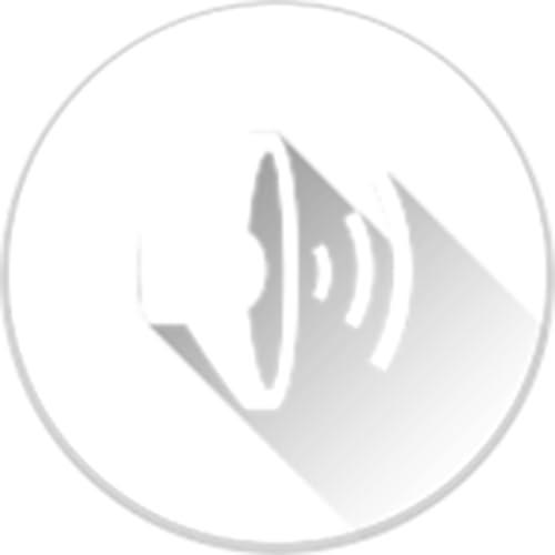 Wireless Headset/Speaker