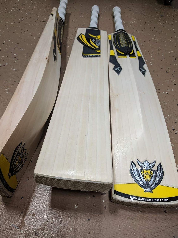Hammer Junior LE Cricket Bat