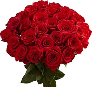 GlobalRose 100 Red Roses- Lovely Natural Blooms- Fresh Cut Flower Delivery