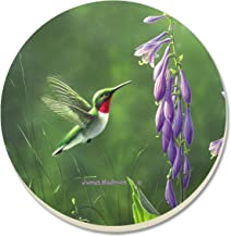 CounterArt Hummingbird Hosta Absorbent Coasters, Set of 4