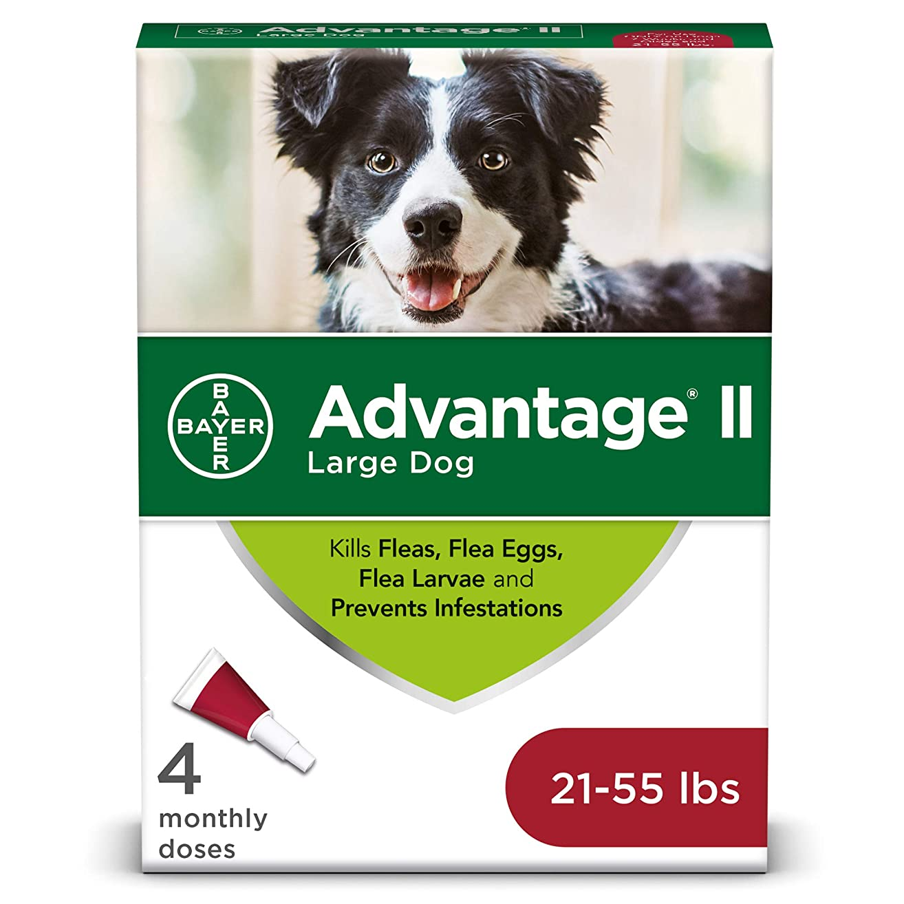 Bayer Advantage II Topical Flea Treatment for Large Dogs, 21 - 55 lbs