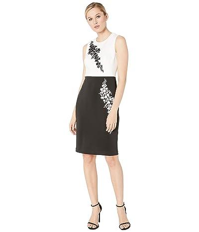 Calvin Klein Caviar Beading Color Block Sheath Dress (Cream/Black) Women