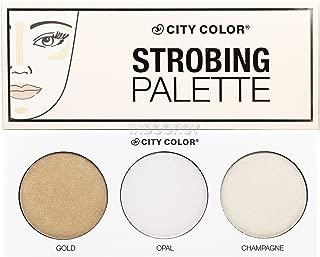 City color strobing palette WITH glitz fan brush