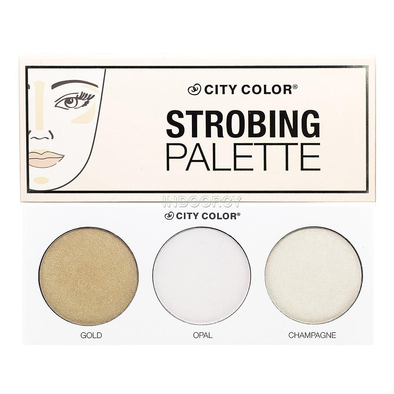 窒素違反信頼性のあるCITY COLOR Strobing Palette (並行輸入品)