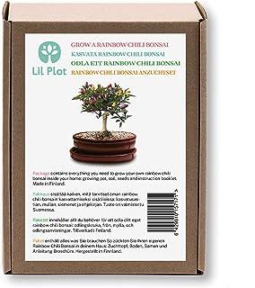 Züchte dein eigenes Rainbow Chili Bonsai | Regenbogen Chili Bonsai Anzuchtset |Rainbow Chili Bonsai - Growing Kit | Geschenk set | Wachstumsgarantie