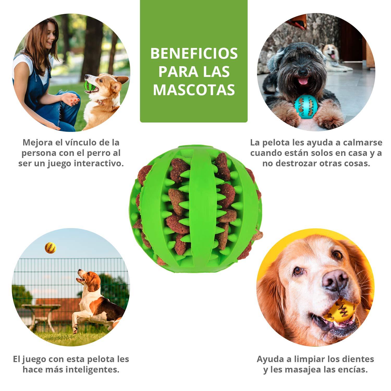 Pelota dental para perros y gatos 3 Uds, resistente, no tóxica ...