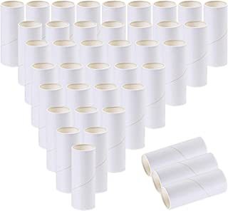 Ruisita 40 Pack Cardboard Tubes Recycled Craft Paper Tubes for Classroom Projects, DIY Arts and Crafts (White)