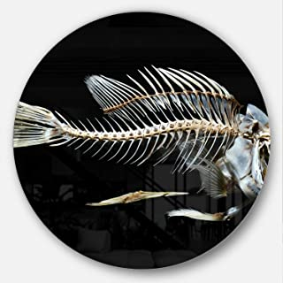 Designart Fish Skeleton Bone on Black Animal Metal Artwork - Disc of 38 inch 38x38-Disc