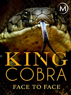 King Cobra: Face to Face