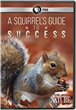 Best a squirrel's guide to success Reviews
