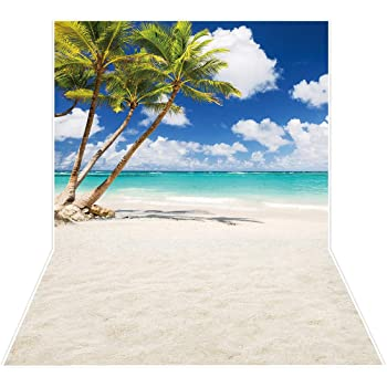 7x10 FT Hawaiian Vinyl Photography Background Backdrops,Palm Tree Rocky Shore Caribbean Mist Traveling Resort Scenic Background for Photo Backdrop Studio Props Photo Backdrop Wall