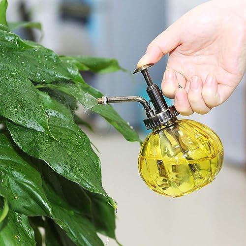 Plant Mister: Amazon ca