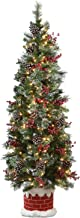 National Tree Company 6 ft. Wintry Pine Half Tree with Clear Lights, Green