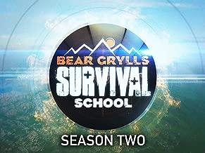 Best bear grylls bear eats Reviews