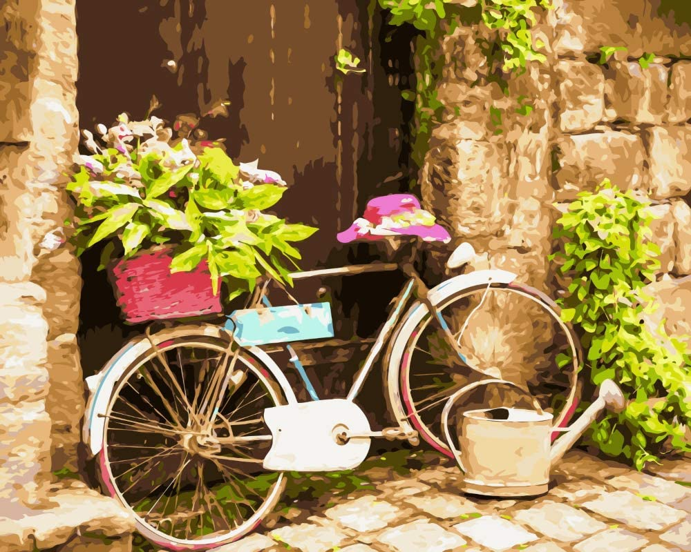 High quality Flower Bike Paint excellence by Numbers for DIY Adults Kit Acrylic Painting