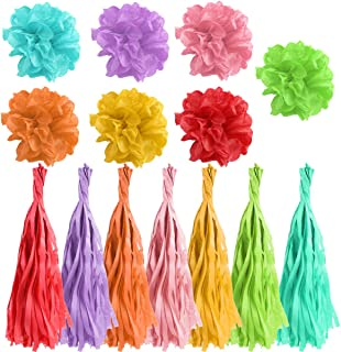 Kuqqi 42 Pcs Paper Flower Ball and Tassel Garland,Rainbow Hanging DIY Pom-poms,Wedding Party Outdoor Decoration Paper Pom ...