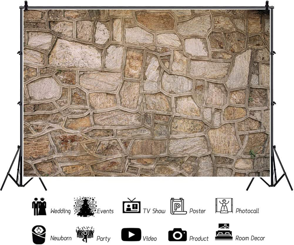 10x6.5ft Vinyl Photography Backdrops Medieval French Stone Building Wall Brown Brick Wall Background Stone Block Outdoor Theme Newborn Baby Kids Adults Portrait Photo Booth Studio Prop Wedding