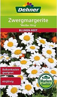 Dehner Blumen-Saatgut, Zwergmargerite Weißer Ring, 5er Pack 5 x 1 g