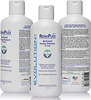 Evolution Pets Best Itchy Dog Shampoo. RenuPlex Plus Medicated Dog Shampoo. Safe, All Natural Dog Shampoo for Itchy Skin and Dog Dry Skin