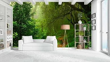 Vinilos Decorativos Pared Naturaleza.Amazon Es Vinilo Naturaleza Hogar Y Cocina