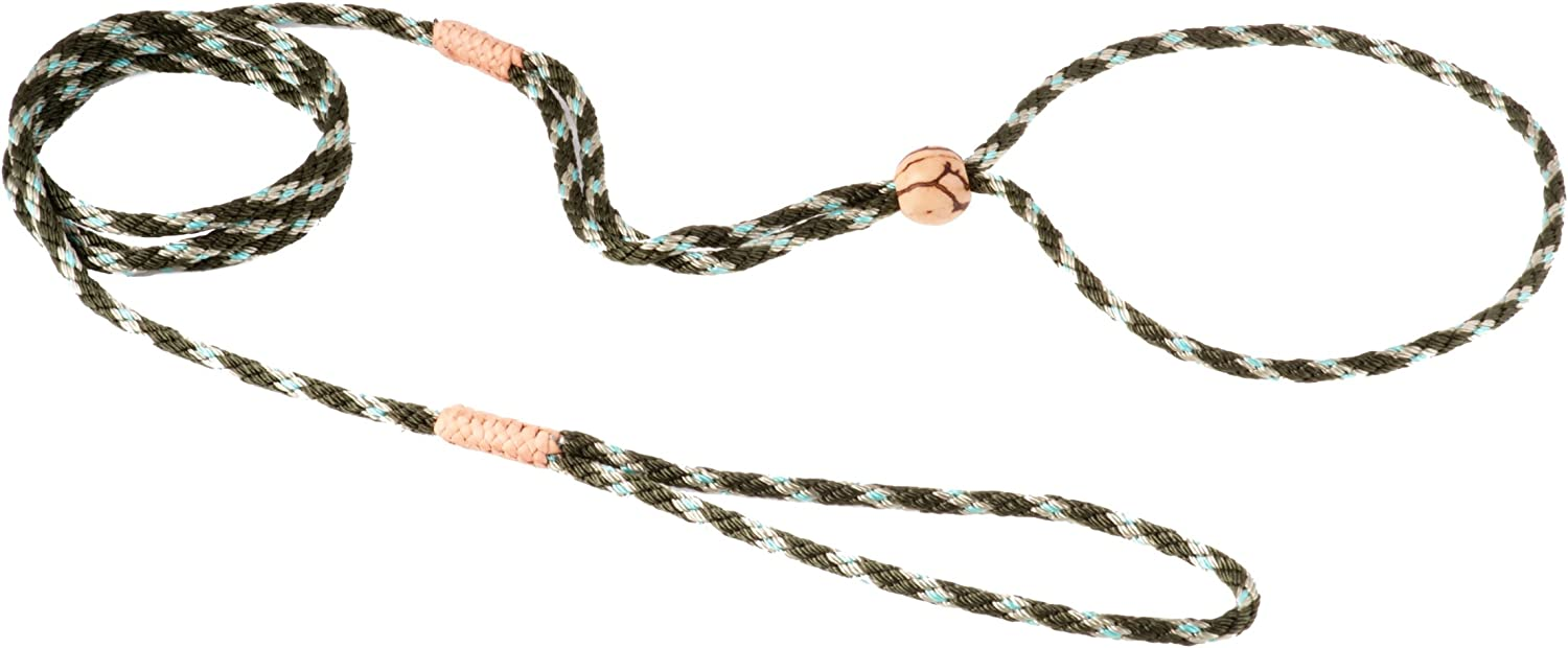 Alvalley Show Nylon Loop Lead for Dogs 4mm x 4ft