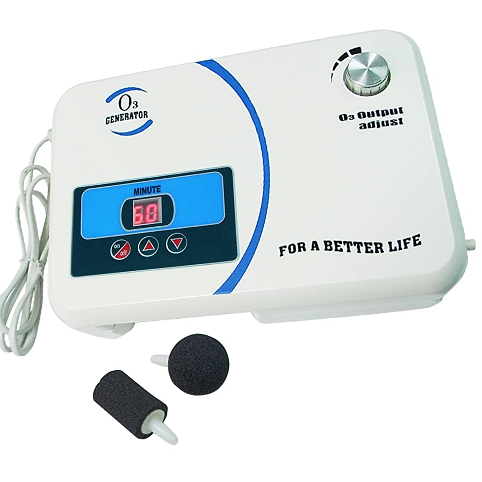 Enaly Home Ozone Generator OZX-300AT