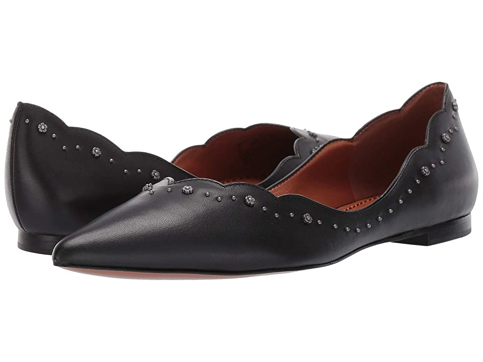 COACH Vivian Pointed Toe Flat with Tea Rose Studs (Black Leather) Women