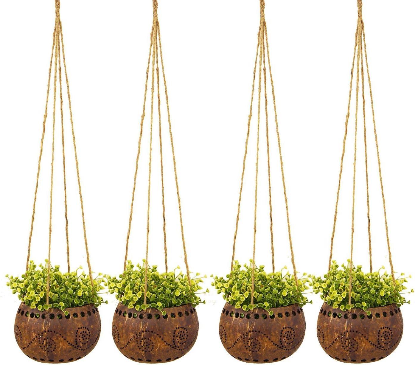 Exotic Elegance Manufacturer direct delivery Set of 4 Garden Shell Decorative Coconut Hang 4