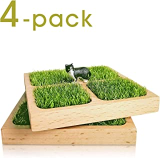 Grass coaster, absorbent wood, turf healing, wedding, wedding, birthday gift, decoration, Pack Of 4.