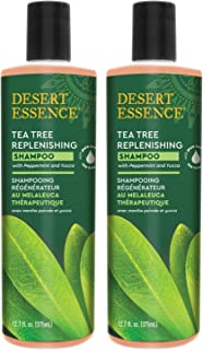 Desert Essence Tea Tree Replenishing Shampoo - 12.7 Fl Oz - Pack of 2 - Therapeutic - Peppermint & Yucca - Antibacterial -...